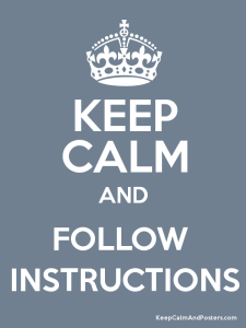 follow instruction