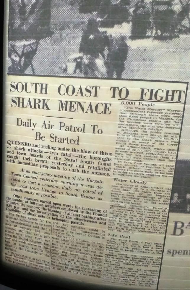 shark-menace